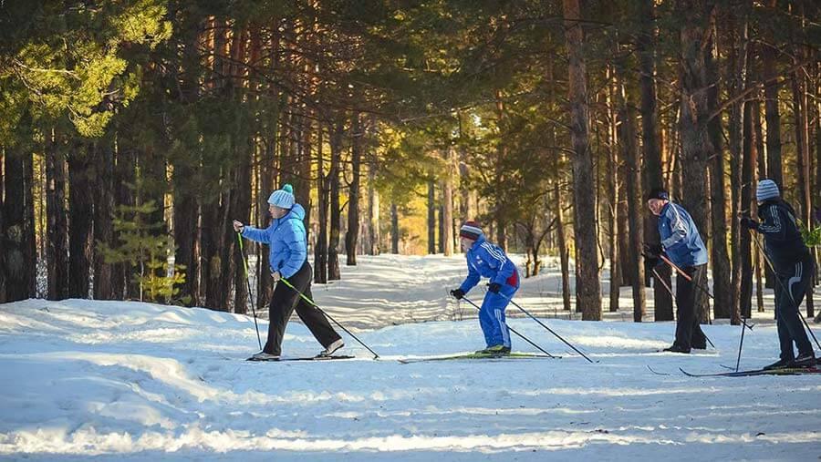 Skiing Trips
